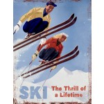Ski The Thrill of a Lifetime